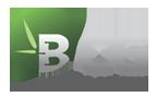 logo-chu-dau-tu-BCG-bambo-capital-group